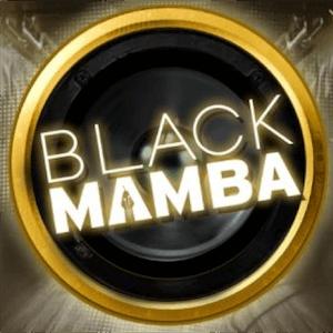 Machine à sous en ligne Black Mamba